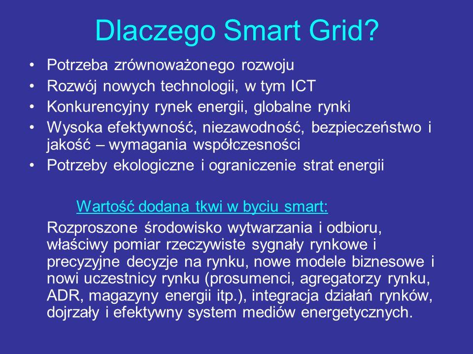 Dlaczego Smart Grid Potrzeba zrównoważonego rozwoju