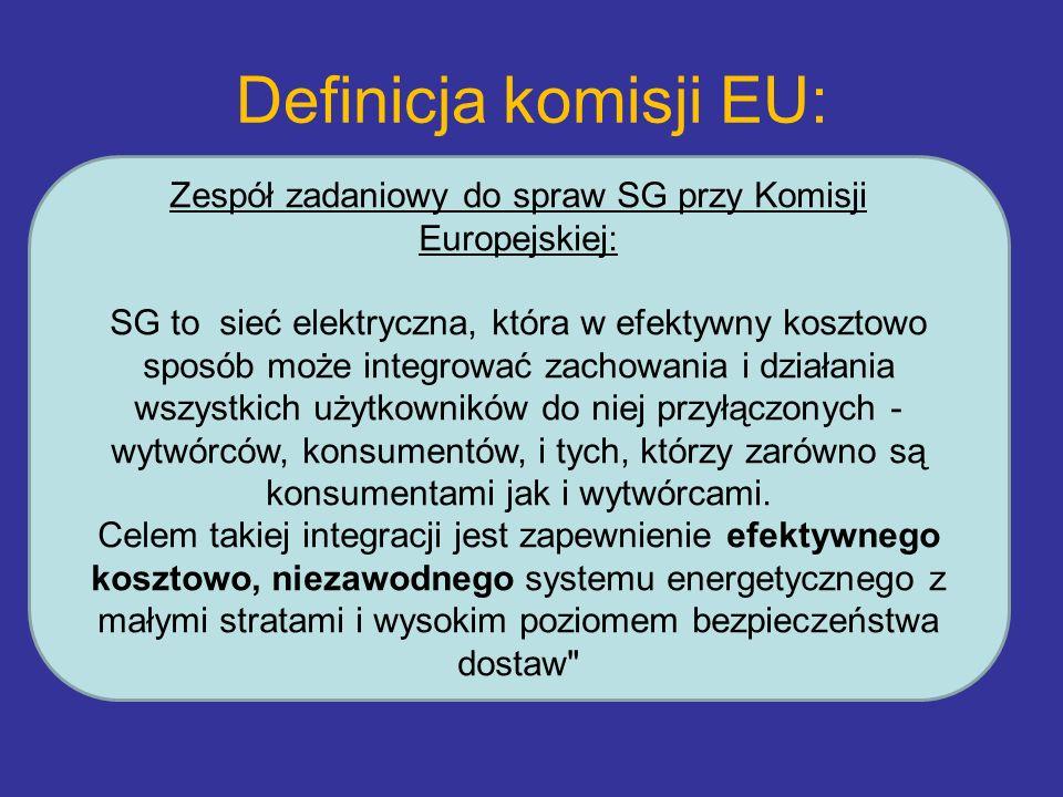 Zespół zadaniowy do spraw SG przy Komisji Europejskiej: