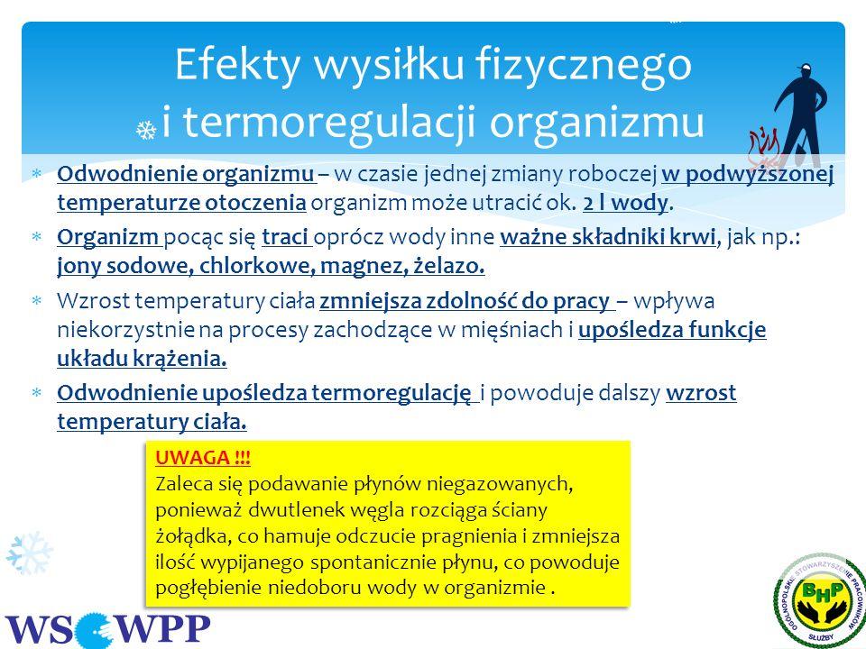 Efekty wysiłku fizycznego i termoregulacji organizmu