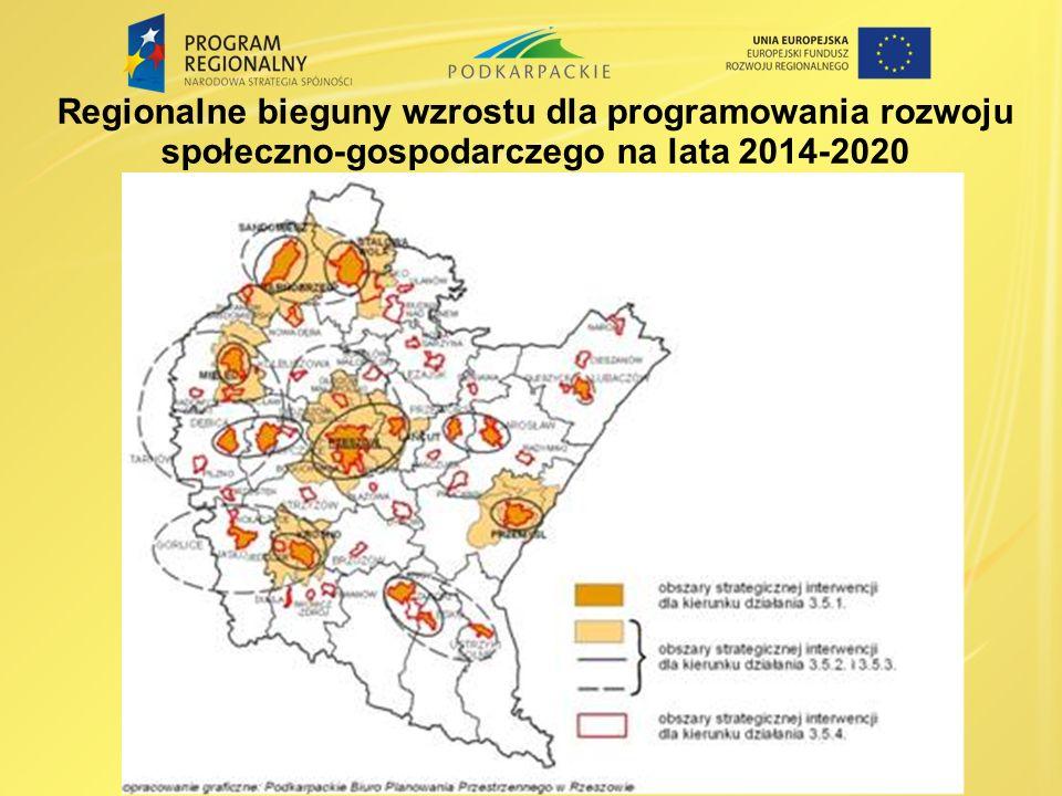 Regionalne bieguny wzrostu dla programowania rozwoju społeczno-gospodarczego na lata 2014-2020