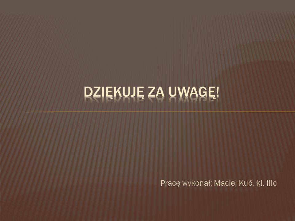 Dziękuję za uwagę! Pracę wykonał: Maciej Kuć, kl. IIIc