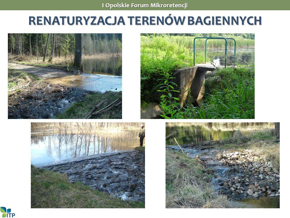 I Opolskie Forum Mikroretencji RENATURYZACJA TERENÓW BAGIENNYCH