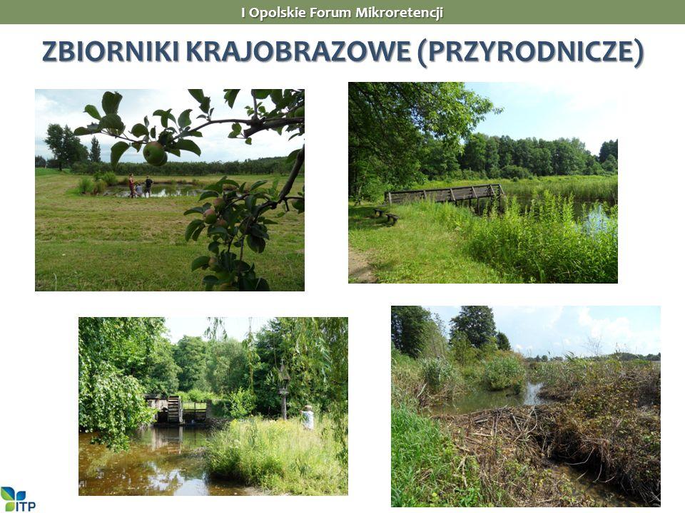 I Opolskie Forum Mikroretencji ZBIORNIKI KRAJOBRAZOWE (PRZYRODNICZE)