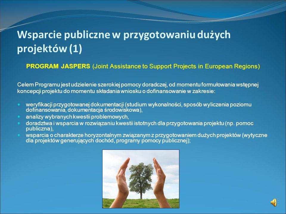 Wsparcie publiczne w przygotowaniu dużych projektów (1)