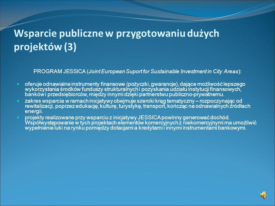Wsparcie publiczne w przygotowaniu dużych projektów (3)