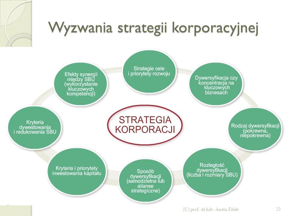 Wyzwania strategii korporacyjnej