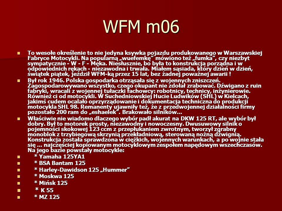 WFM m06