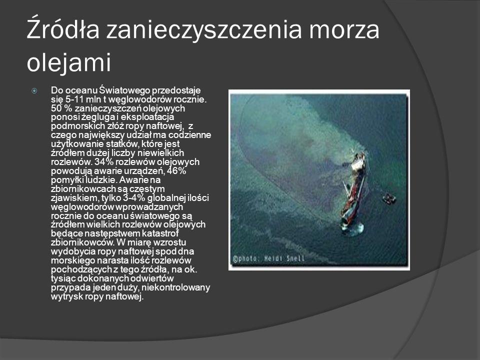 Źródła zanieczyszczenia morza olejami