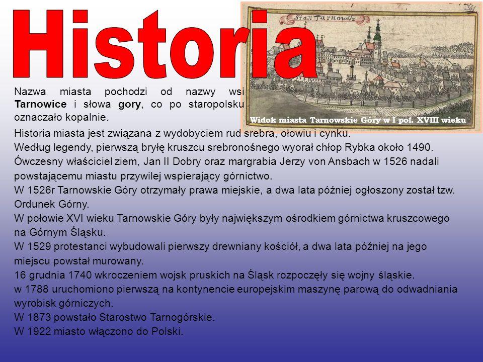Historia Nazwa miasta pochodzi od nazwy wsi Tarnowice i słowa gory, co po staropolsku oznaczało kopalnie.