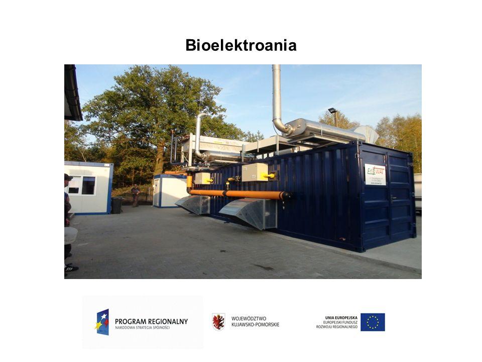 Bioelektroania