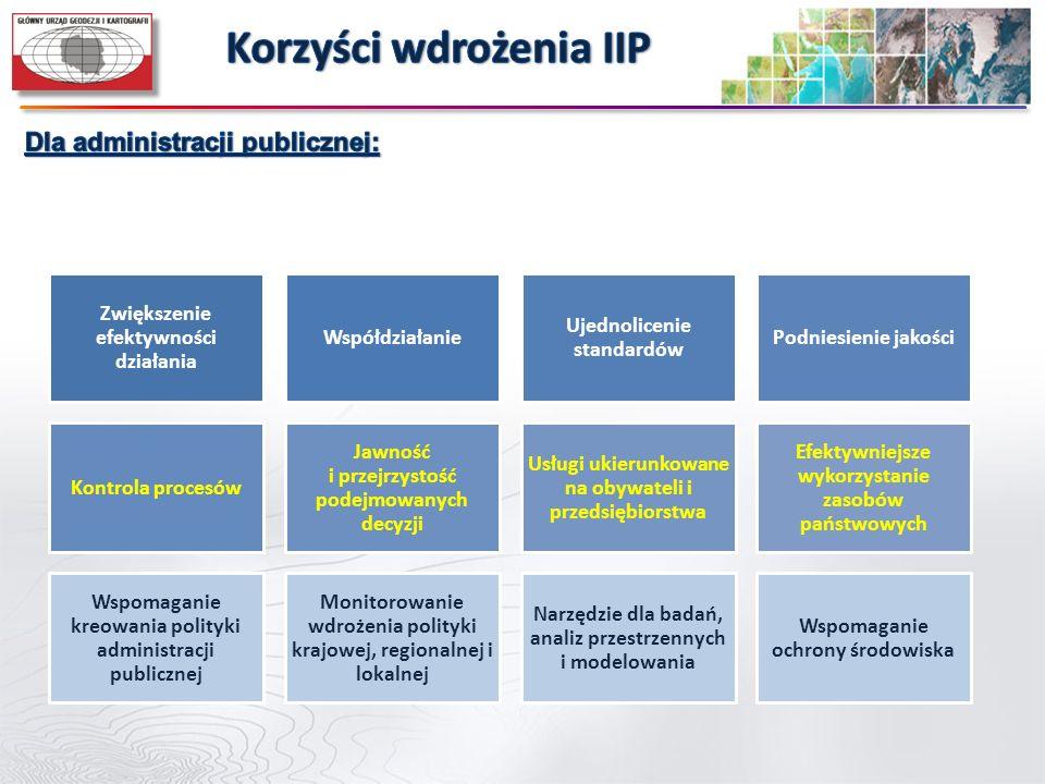 Korzyści wdrożenia IIP