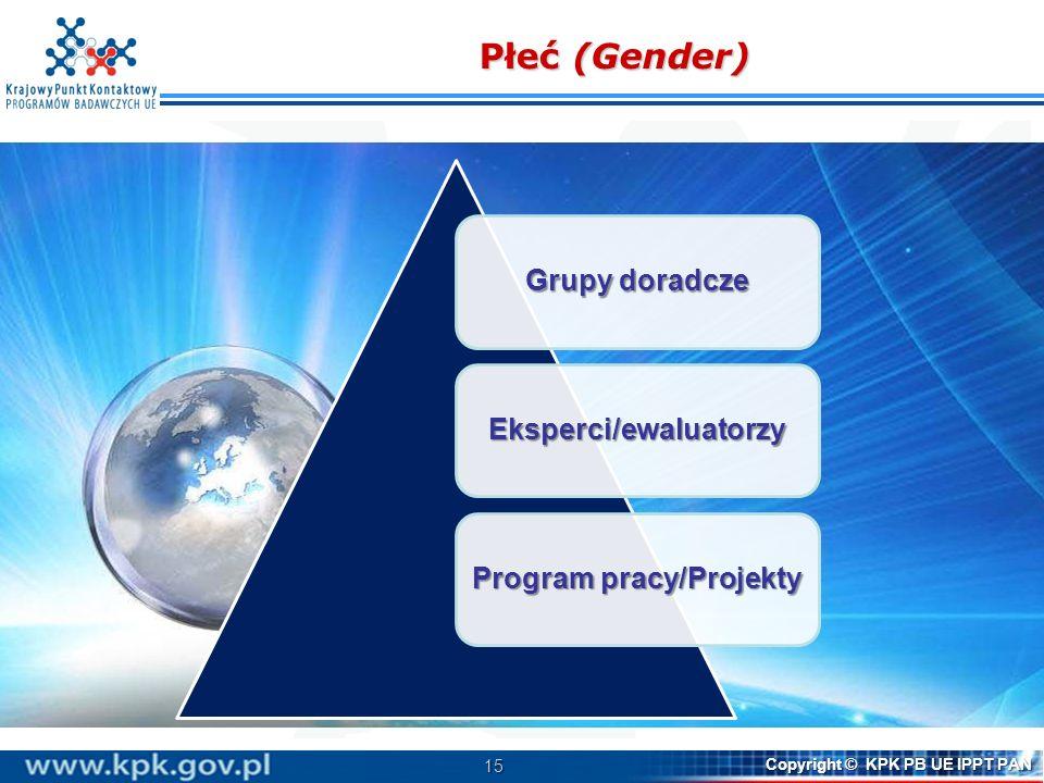 Eksperci/ewaluatorzy Program pracy/Projekty