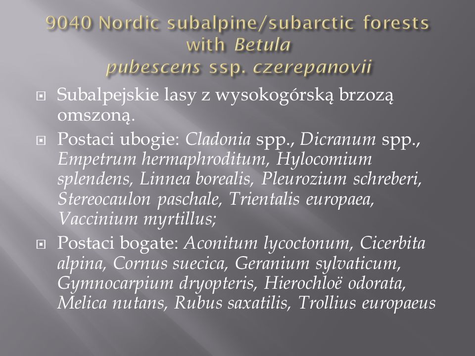 9040 Nordic subalpine/subarctic forests with Betula pubescens ssp