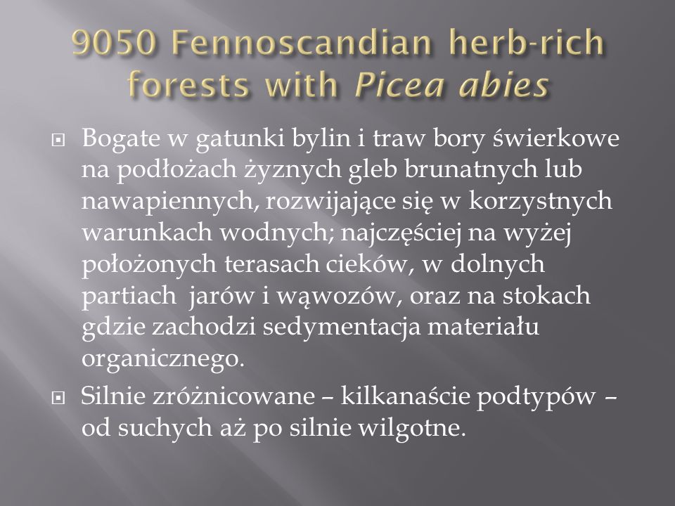 9050 Fennoscandian herb-rich forests with Picea abies