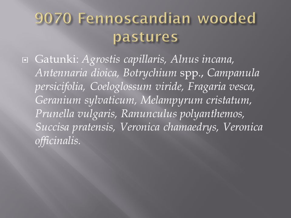 9070 Fennoscandian wooded pastures
