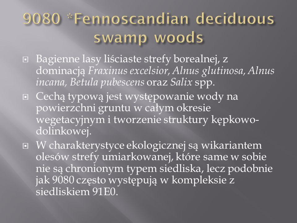 9080 *Fennoscandian deciduous swamp woods