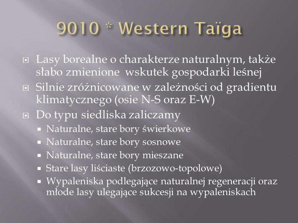 9010 * Western Taïga Lasy borealne o charakterze naturalnym, także słabo zmienione wskutek gospodarki leśnej.