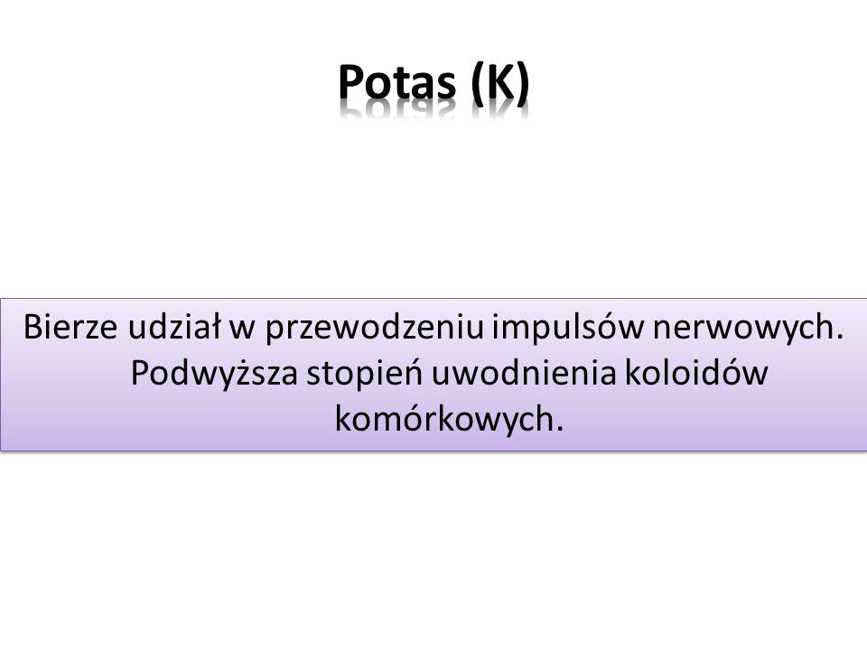 Potas (K) Bierze udział w przewodzeniu impulsów nerwowych.