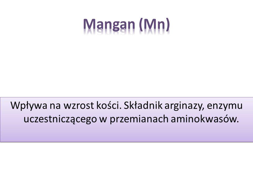 Mangan (Mn)Wpływa na wzrost kości.