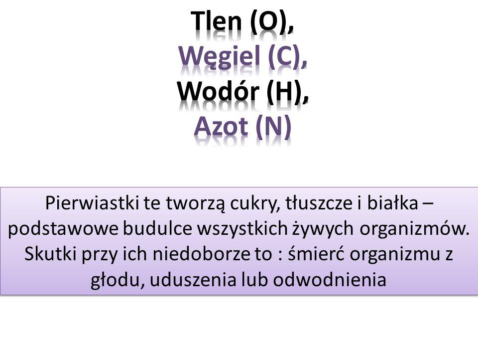 Tlen (O), Węgiel (C), Wodór (H), Azot (N)