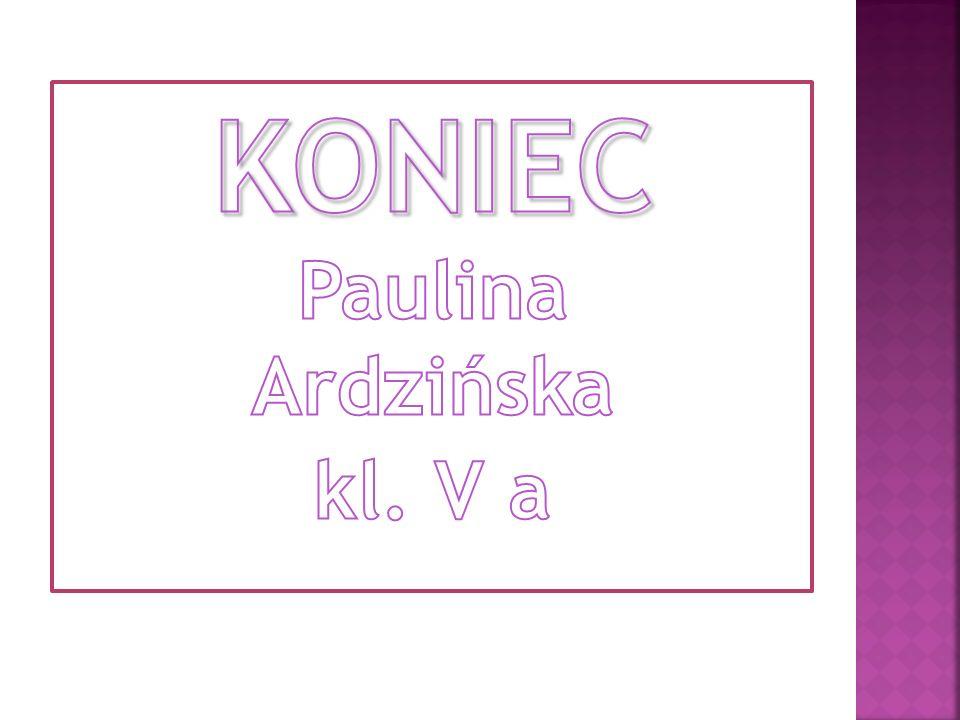 KONIEC Paulina Ardzińska