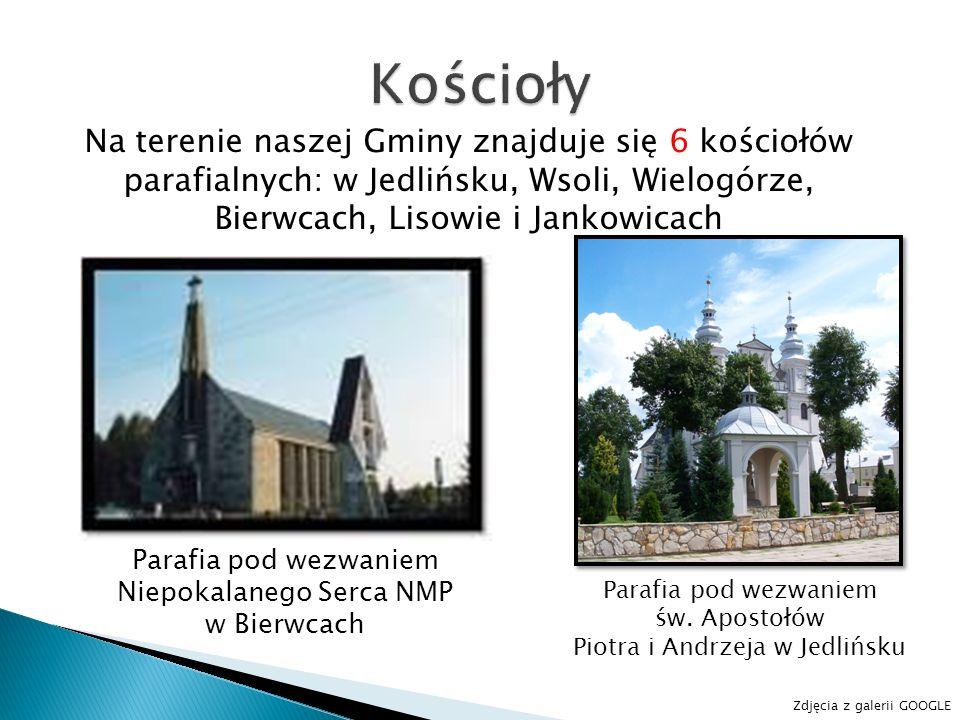 KościołyNa terenie naszej Gminy znajduje się 6 kościołów parafialnych: w Jedlińsku, Wsoli, Wielogórze, Bierwcach, Lisowie i Jankowicach.