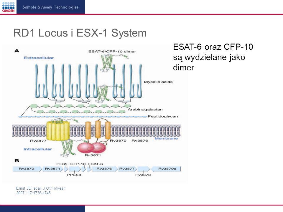 RD1 Locus i ESX-1 System ESAT-6 oraz CFP-10 są wydzielane jako dimer