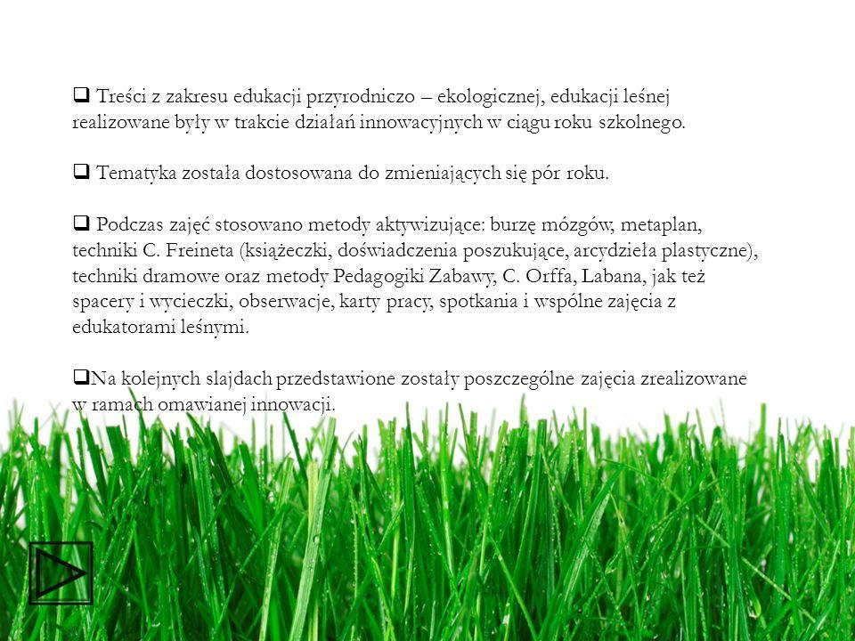 Treści z zakresu edukacji przyrodniczo – ekologicznej, edukacji leśnej realizowane były w trakcie działań innowacyjnych w ciągu roku szkolnego.