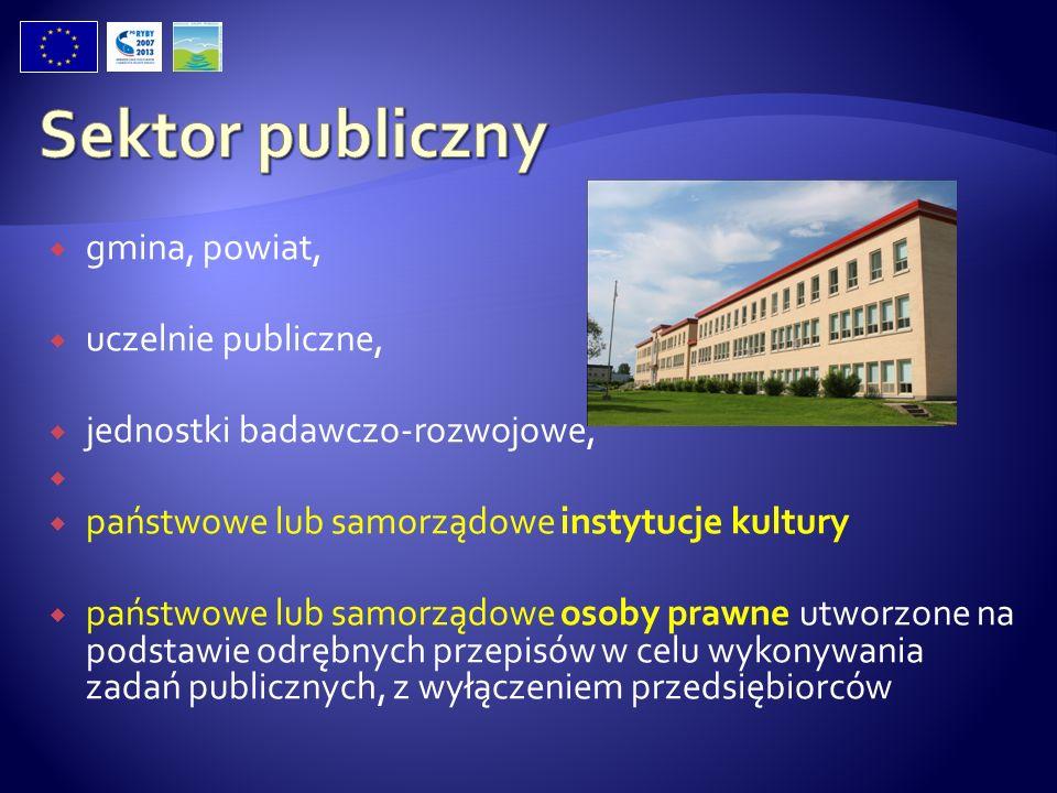 Sektor publiczny gmina, powiat, uczelnie publiczne,