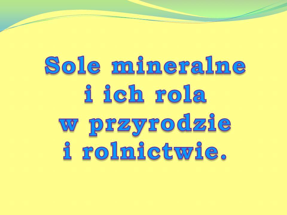 Sole mineralne i ich rola w przyrodzie i rolnictwie.