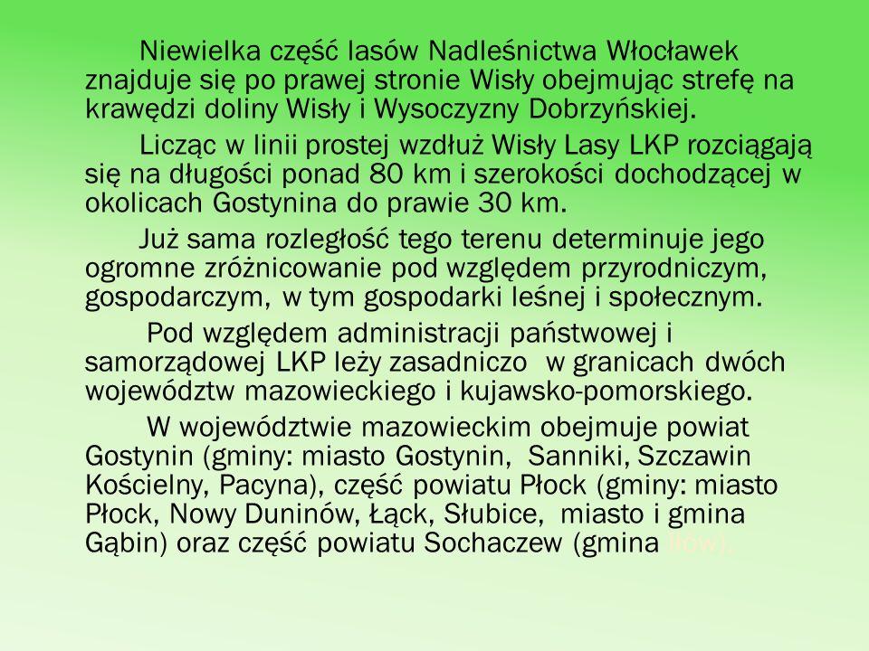 Niewielka część lasów Nadleśnictwa Włocławek znajduje się po prawej stronie Wisły obejmując strefę na krawędzi doliny Wisły i Wysoczyzny Dobrzyńskiej.