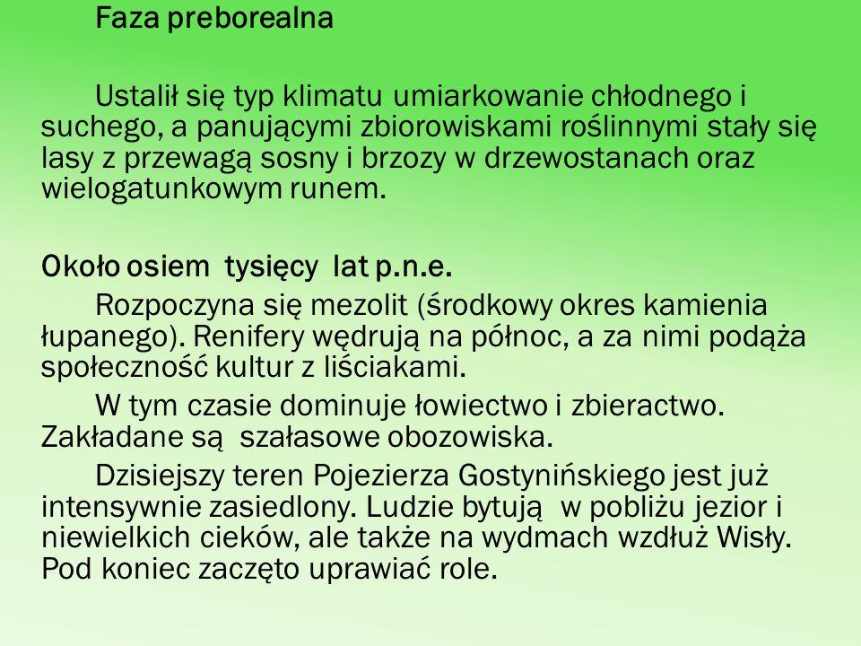 Faza preborealna