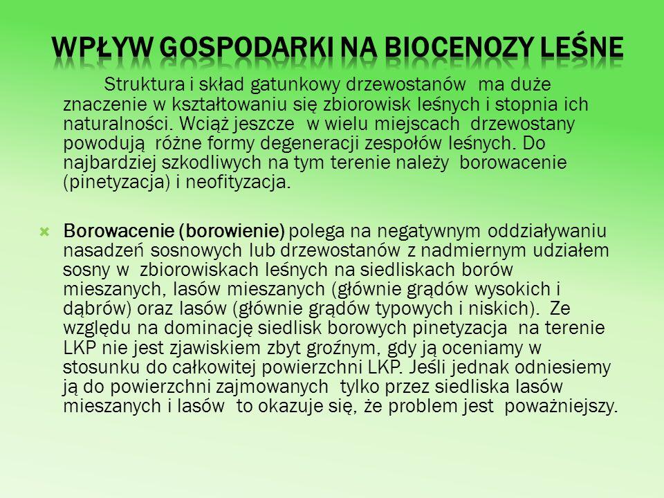 Wpływ gospodarki na biocenozy leśne