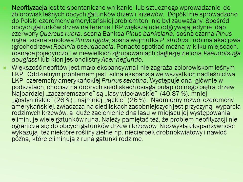 Neofityzacja jest to spontaniczne wnikanie lub sztucznego wprowadzanie do zbiorowisk leśnych obcych gatunków drzew i krzewów. Dopóki nie sprowadzono do Polski czeremchy amerykańskiej problem ten nie był zauważany. Spośród obcych gatunków drzew na terenie LKP większą rolę odgrywają jedynie: dąb czerwony Quercus rubra, sosna Banksa Pinus banksiana, sosna czarna Pinus nigra, sosna smołowa Pinus rigida, sosna wejmutka P. strobus i robinia akacjowa (grochodrzew) Robinia pseudacacia. Ponadto spotkać można w kilku miejscach, rosnące pojedynczo i w niewielkich zgrupowaniach daglezję zieloną Pseudotsuga douglassi lub klon jesionolistny Acer negundo.