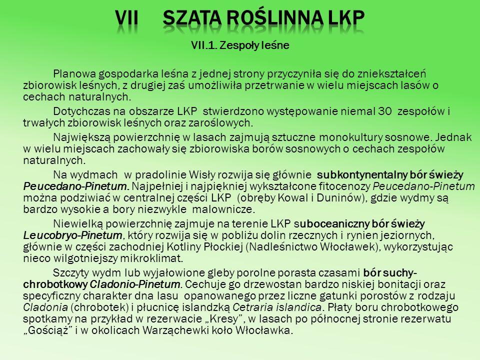 VII Szata roślinna LKP VII.1. Zespoły leśne