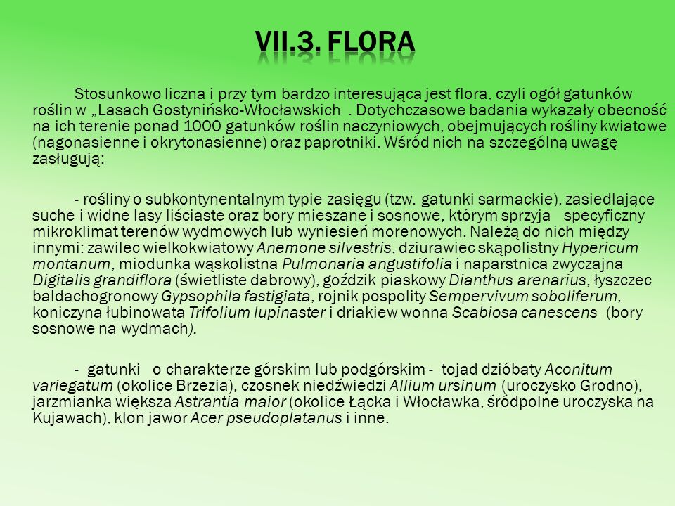 VII.3. Flora