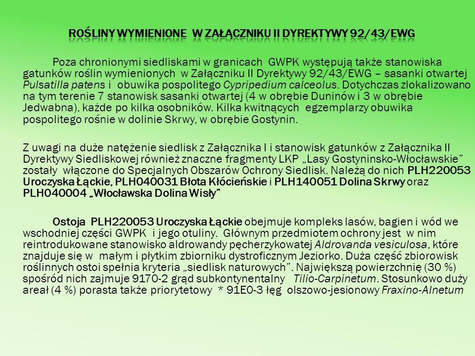 Rośliny wymienione w Załączniku II Dyrektywy 92/43/EWG
