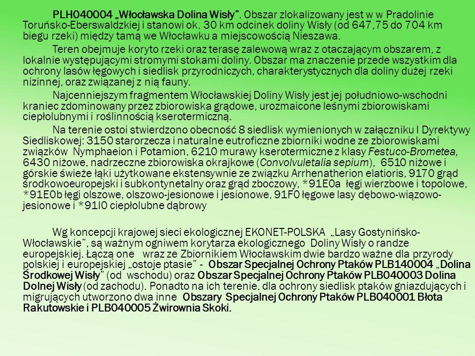 """PLH040004 """"Włocławska Dolina Wisły"""