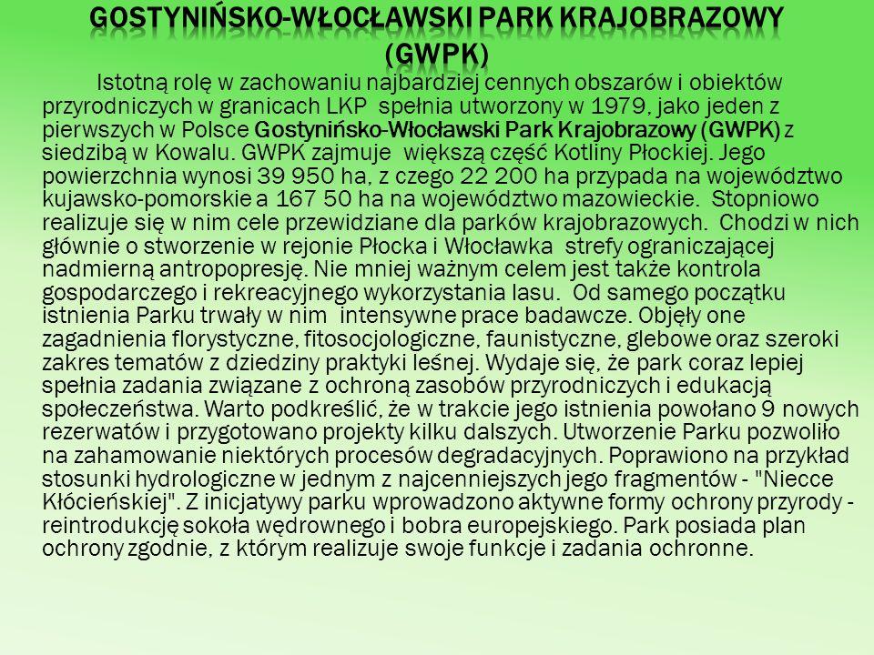 Gostynińsko-Włocławski Park Krajobrazowy (GWPK)