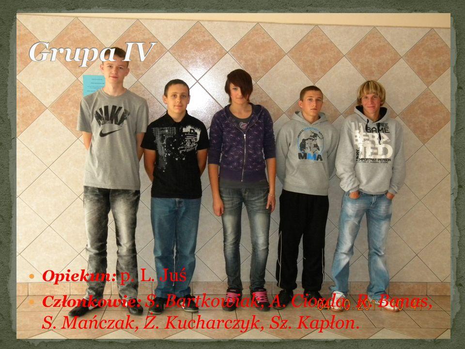 Grupa IV Opiekun: p. L. Juś