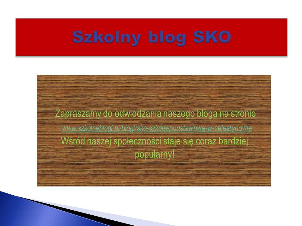 Szkolny blog SKO