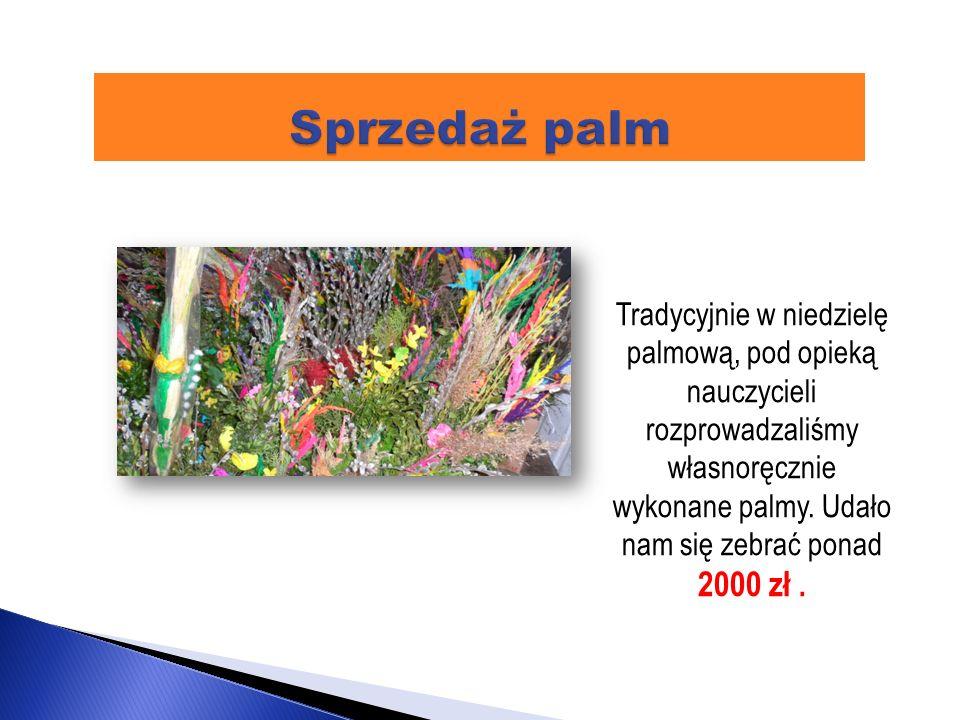 Sprzedaż palm