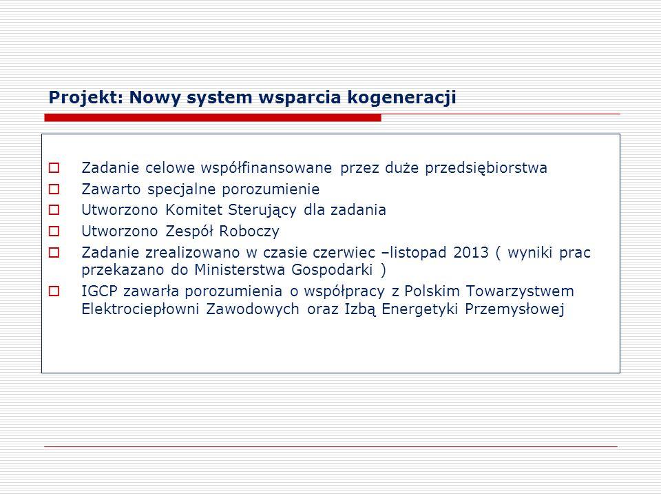 Projekt: Nowy system wsparcia kogeneracji