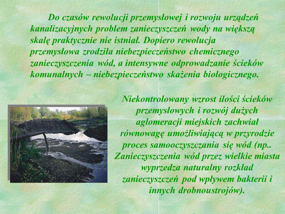Do czasów rewolucji przemysłowej i rozwoju urządzeń kanalizacyjnych problem zanieczyszczeń wody na większą skalę praktycznie nie istniał. Dopiero rewolucja przemysłowa zrodziła niebezpieczeństwo chemicznego zanieczyszczenia wód, a intensywne odprowadzanie ścieków komunalnych – niebezpieczeństwo skażenia biologicznego.