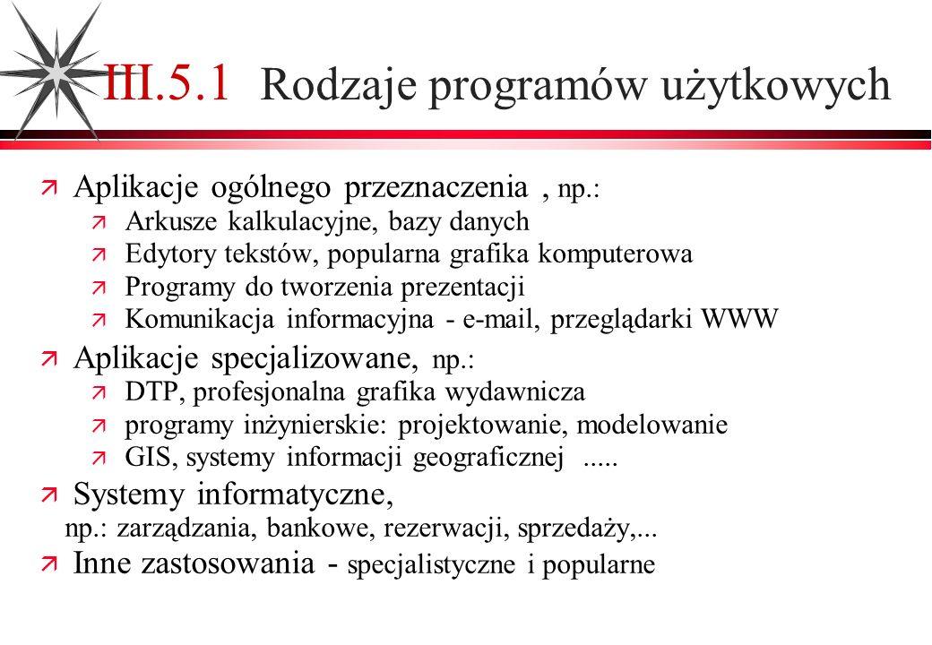 III.5.1 Rodzaje programów użytkowych