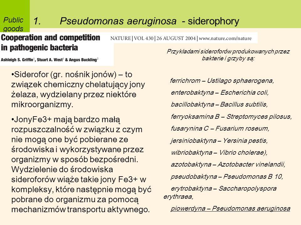 Przykładami sideroforów produkowanych przez bakterie i grzyby są: