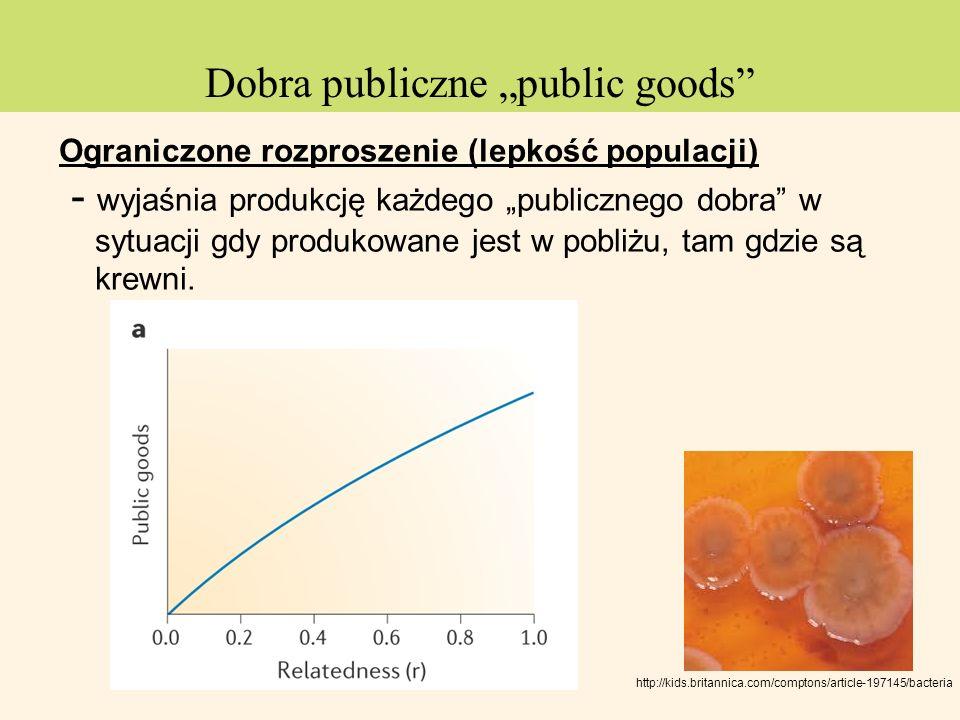 "Dobra publiczne ""public goods"