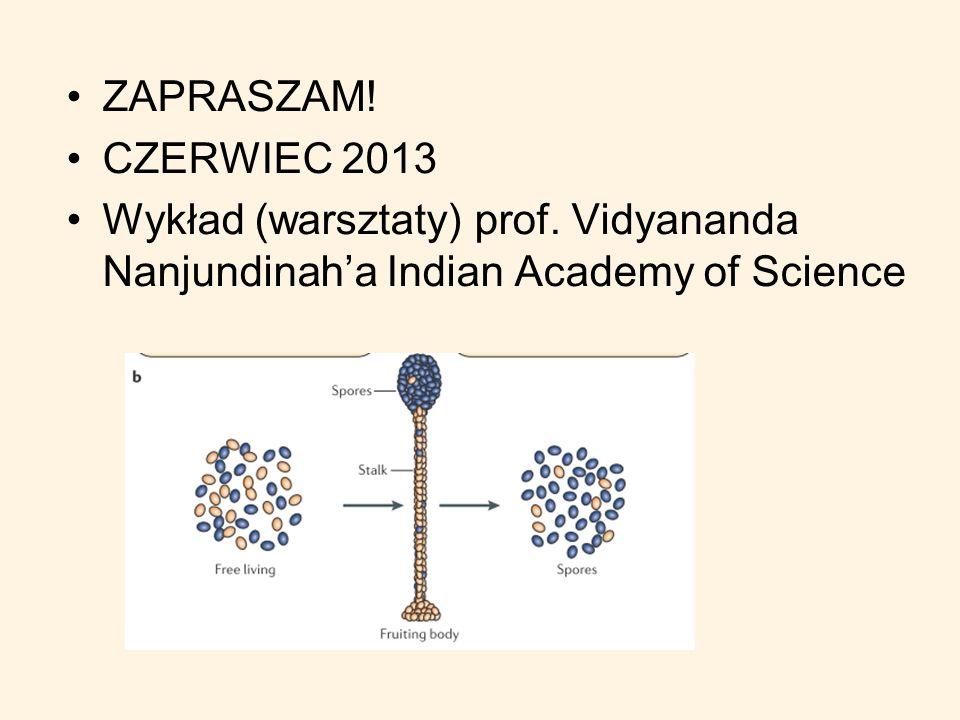 ZAPRASZAM. CZERWIEC 2013. Wykład (warsztaty) prof.
