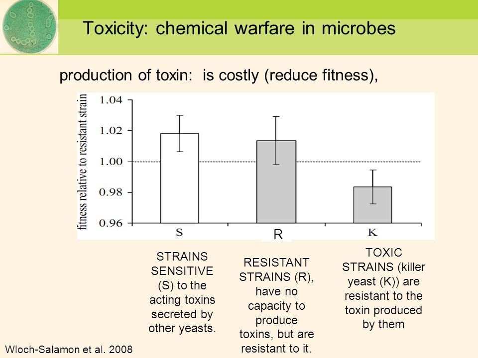 Toxicity: chemical warfare in microbes