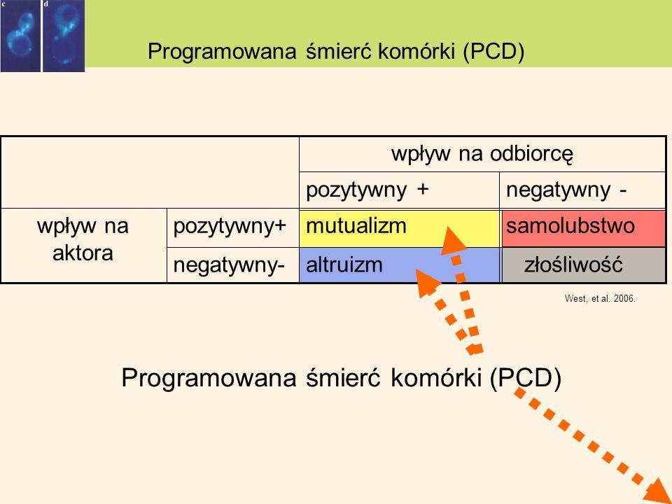 Programowana śmierć komórki (PCD)